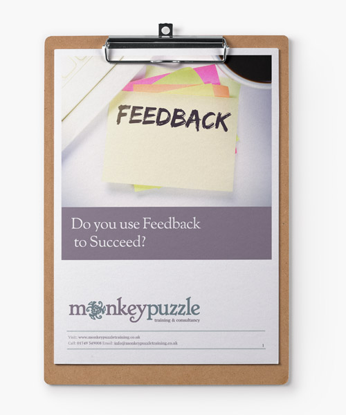 Do-You-Use-Feedback-To-Succeeed?